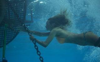 Фильмы про акул 2019: новинки кино (2018)