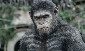 Хронология фильмов «Планета обезьян»: все части, фильмы и серии по порядку