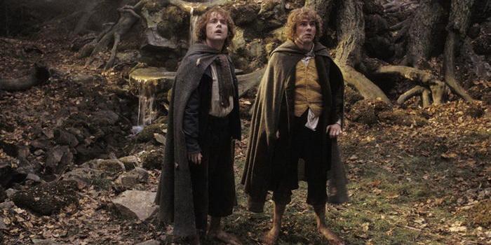 Сцена из франшизы Властелин колец: Братство кольца (2001)
