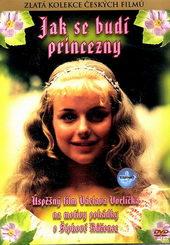 Фотопостер к кинофильму Как разбудить принцессу