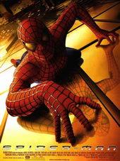 Постер к Человеку-пауку (2002)