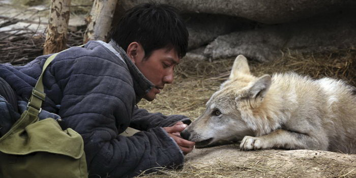 Кадр из фильма Тотем волка (2015)