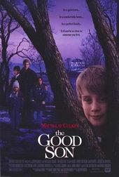 Постер к ужасам Добрый сынок (1993)