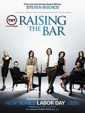 Плакат к сериалу Адвокатская практика(2008)