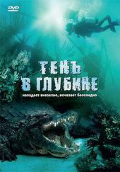 Плакат к фильму Тень в глубине (2007)