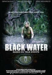 Плакат к фильму Хищные воды (2007)