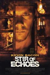 Плакат к фильму Отзвуки эха (1999)