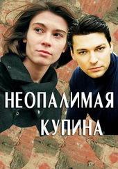 Плакат к сериалу Неопалимая купина (2017)