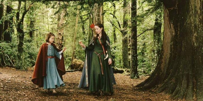кадр из фильма Хроники Нарнии: Лев, колдунья и волшебный шкаф (2005)