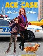 постер к фильму Реши кейс (2016)