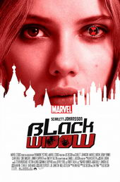 постер к фильму Черная вдова (2020)