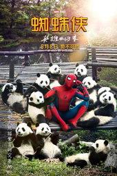 плакат к фильму Человек-Паук: Возвращение домой (2017)