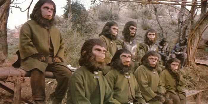 Битва за планету обезьян1973 года