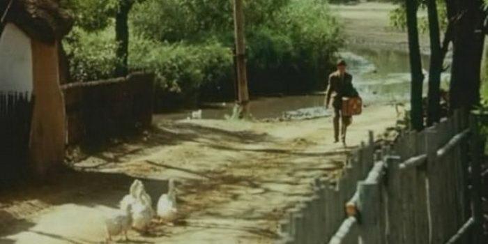 Сцена из фильма Здравствуй и прощай (1972)