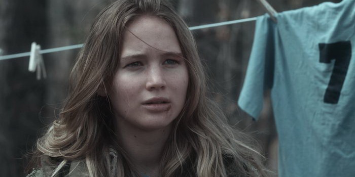 Зимняя кость (2010)