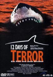 Постер к фильму 12 дней страха (2003)