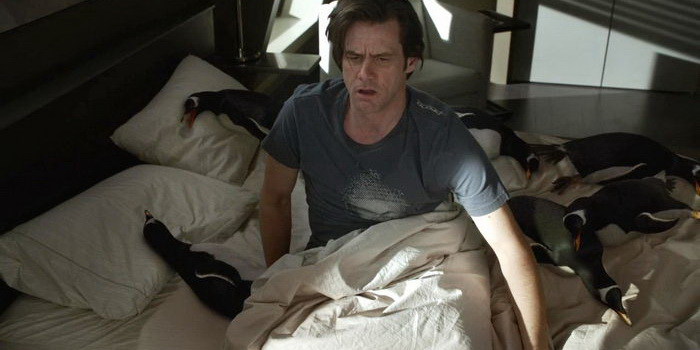 Сцена из фильма Пингвины мистера Поппера (2011)