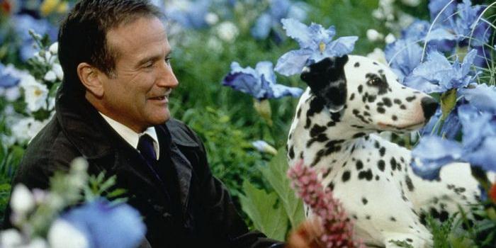 Сцена из фильма Куда приводят мечты (1998)