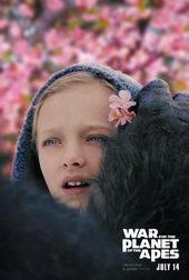 постер к фильму Планета Обезьян: Война(2017)